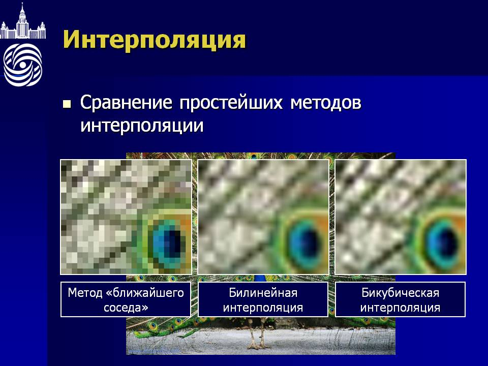 Пример интерполяции фото
