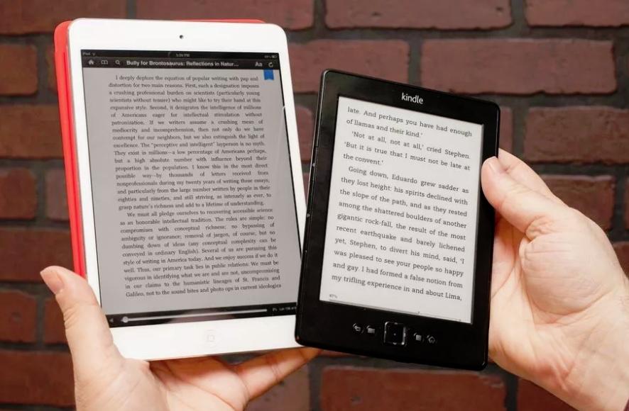 Тип экрана электронной книги
